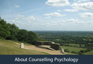 About counselling psychology